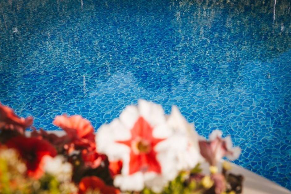 Dettaglio piscina con fiori - Tenuta Villa dei Fiori